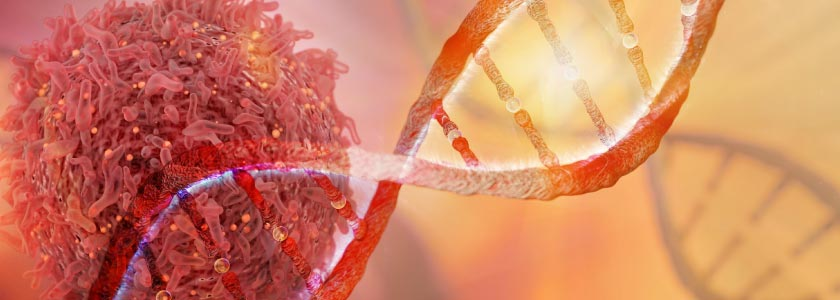 Prime editing, still new on the CRISPR scene, targets liver cancer hero image