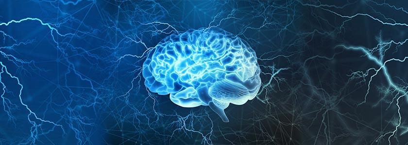 CRISPR and the brain hero image