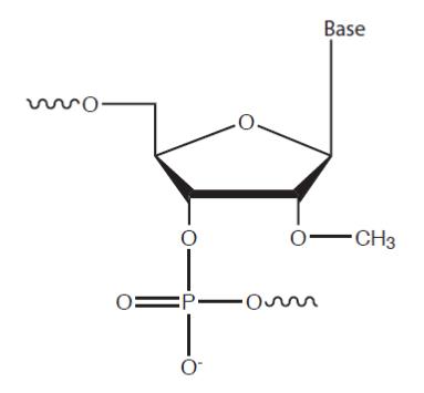 D-FG13CC-modulatenoncoding-F2