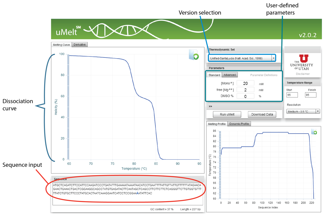 User interface of uMelt tool