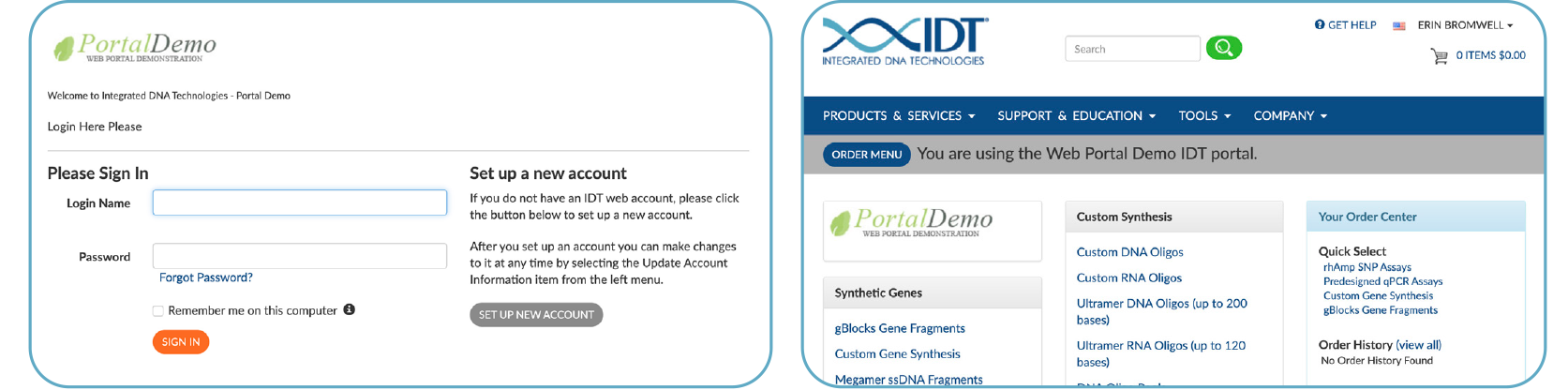 Examples of IDT API portal configurations