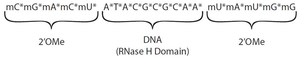 D-FG13CC-modulatenoncoding-F3