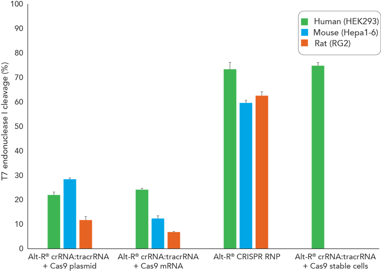 Lipofection of Alt-R CRISPR-Cas9 System components as a ribonucleoprotein (RNP) outperforms other transient CRISPR-Cas9 methods