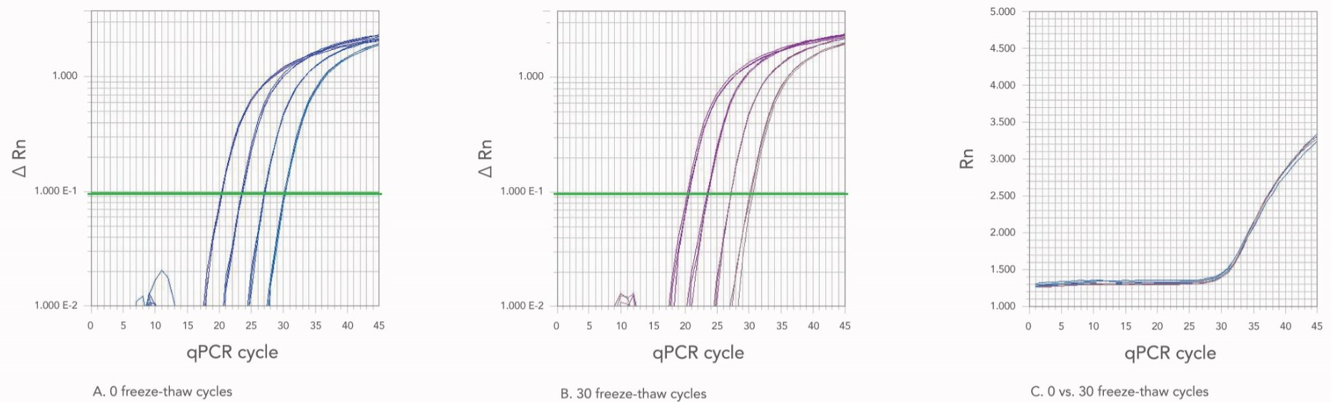30 cycles of repeated freeze and thaw does not alter oligo stability