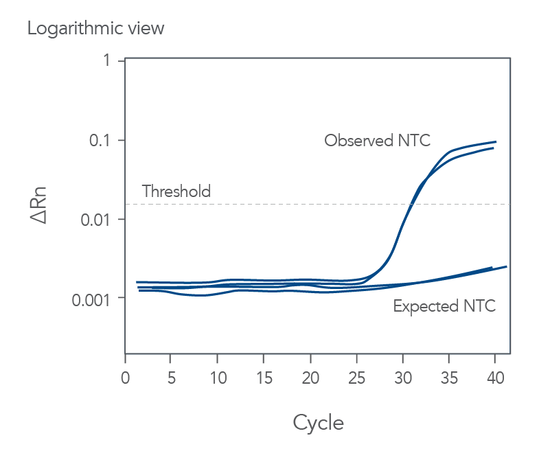 Amplification of the No-Template Control (NTC)