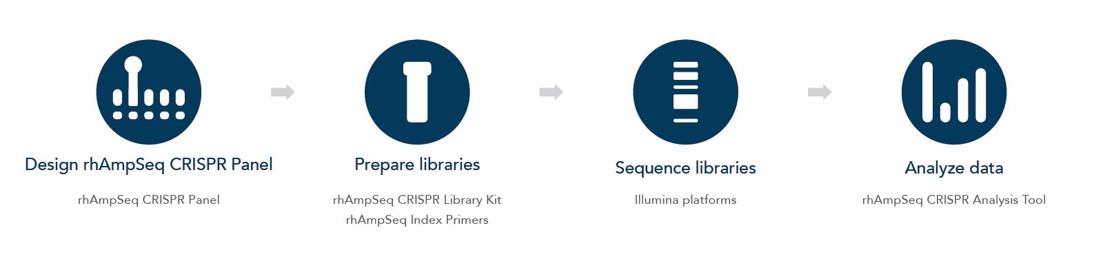 rhAmpSeq CRISPR Workflow and Components