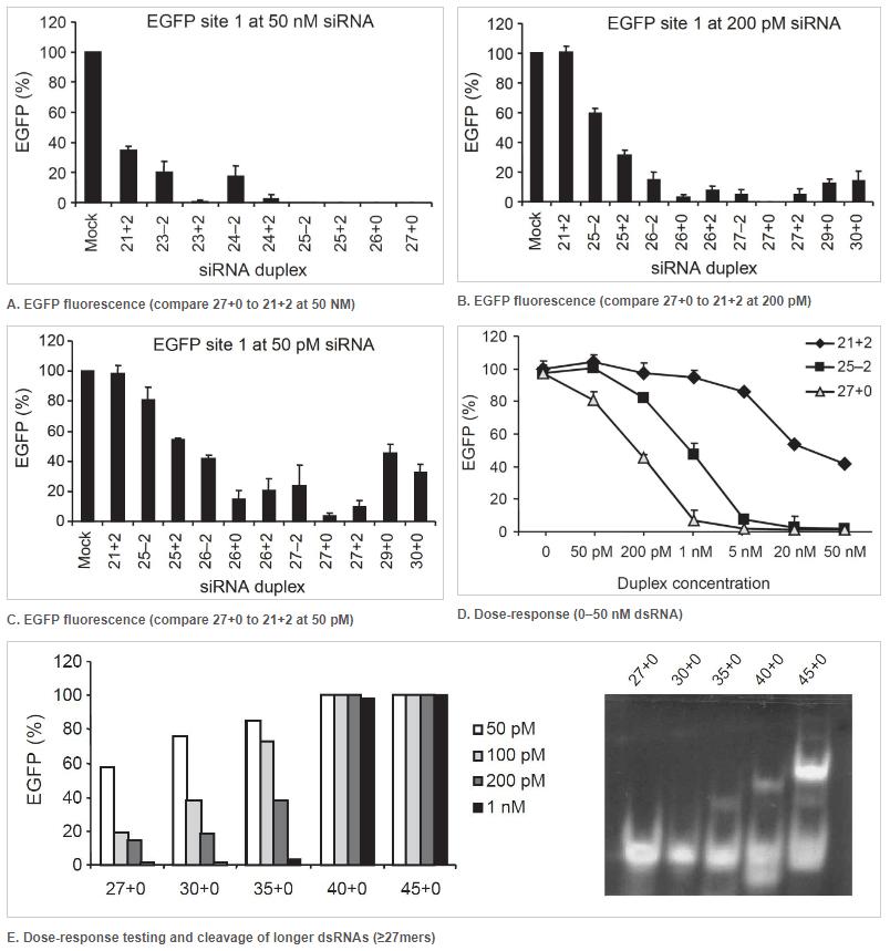 Potency of 27mer DsiRNAs