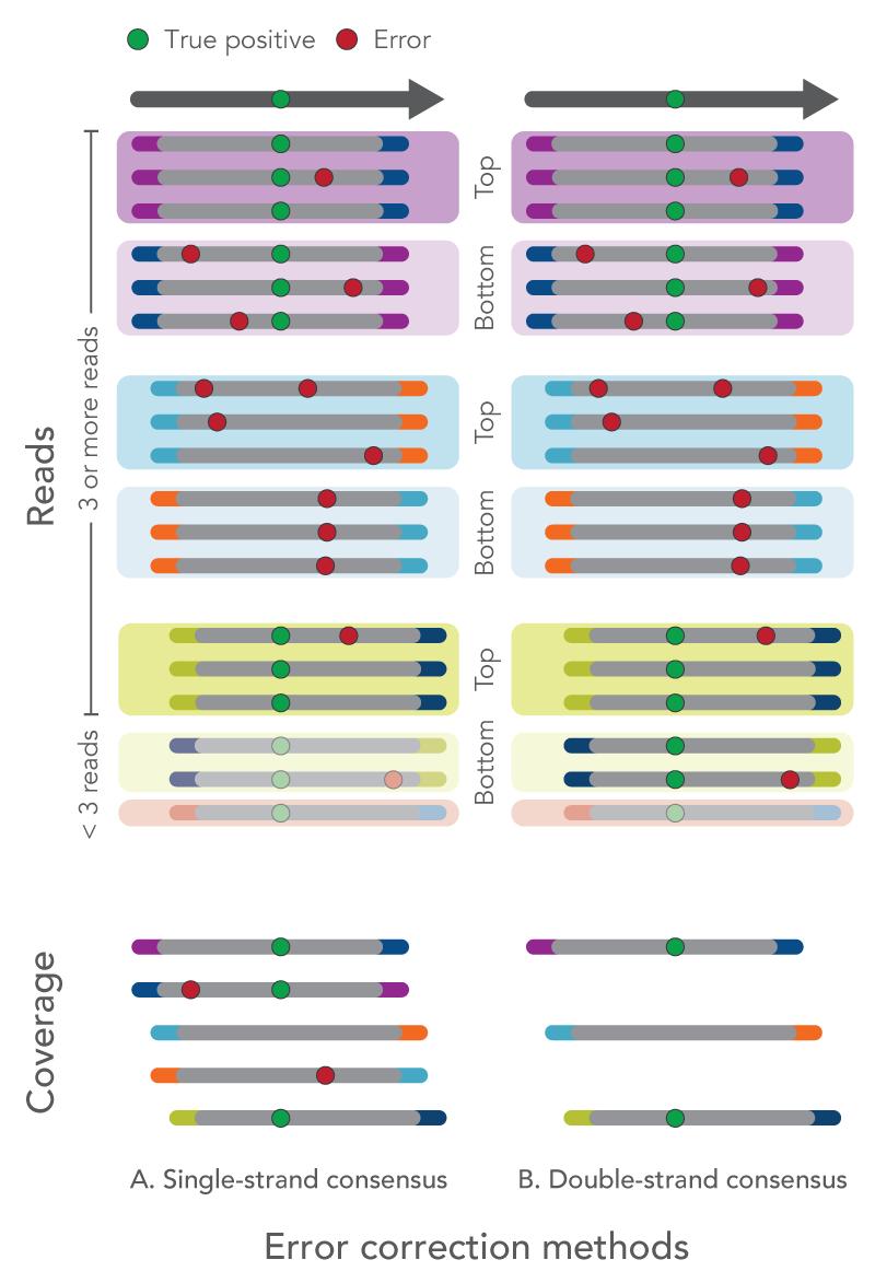 20_NG_Figures_xGen Prism_error correction methods