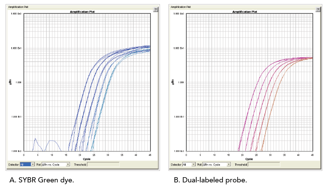 Same high efficiency for probe and primer assays