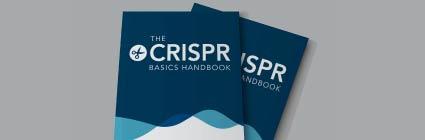 20_IDT_CRISPR Basics Handbook sidebar banner_425x140_v1